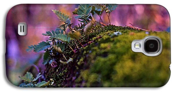 Leaves On A Log Galaxy S4 Case by Bellesouth Studio