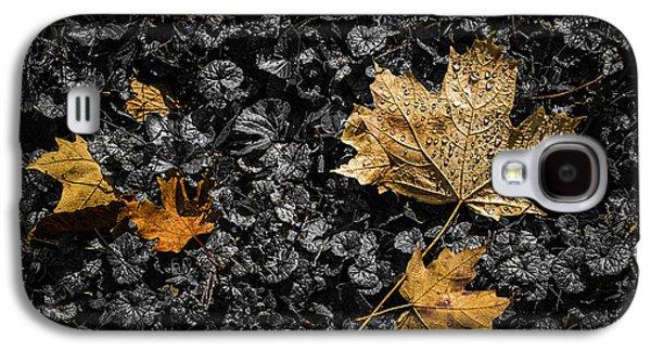 Leaves On Forest Floor Galaxy S4 Case by Tom Mc Nemar
