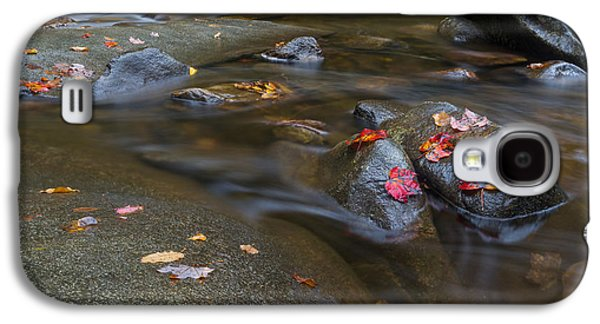 Leaves On The River Path Galaxy S4 Case by Andres Leon
