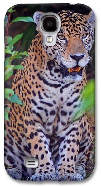 Leopard Galaxy S4 Case by Genaro Rojas