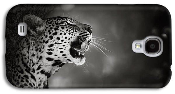 Cat Galaxy S4 Case - Leopard Portrait by Johan Swanepoel