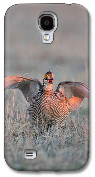 Lesser Prairie Chicken (tympanuchus Galaxy S4 Case