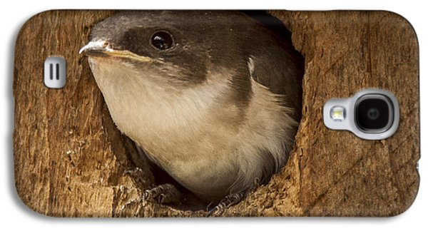 Lift Off Galaxy S4 Case