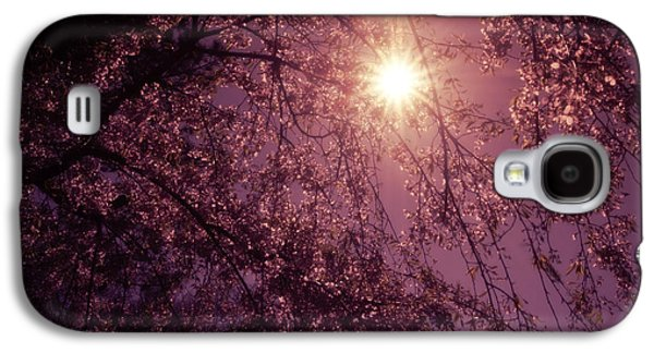 Light And Cherry Blossoms Galaxy S4 Case by Vivienne Gucwa