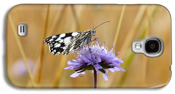 Light Butterfly Galaxy S4 Case by Marc Philippe Joly