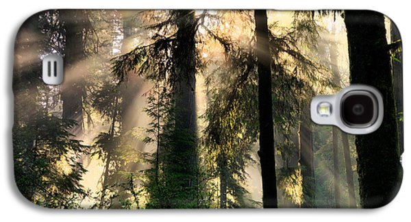 Lightning The Forest Galaxy S4 Case