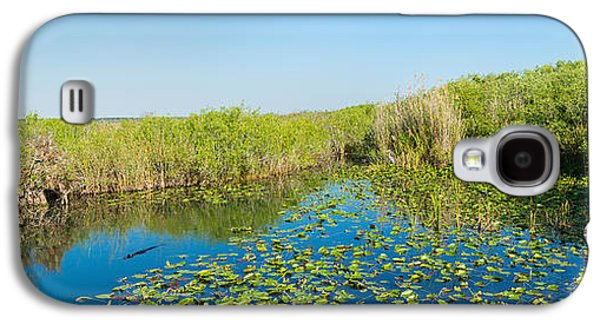 Lily Pads In The Lake, Anhinga Trail Galaxy S4 Case