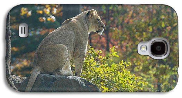 Lion In Autumn Galaxy S4 Case
