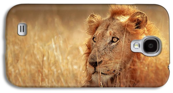 Lion In Grass Galaxy S4 Case by Johan Swanepoel
