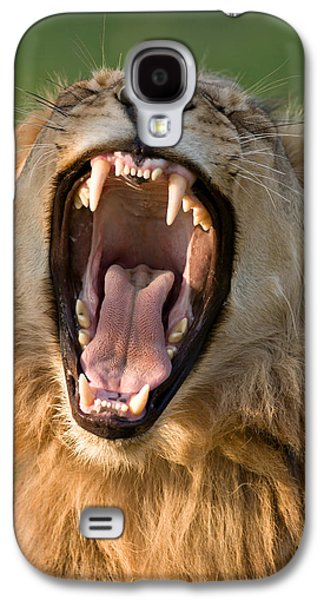Lion Galaxy S4 Case by Johan Swanepoel