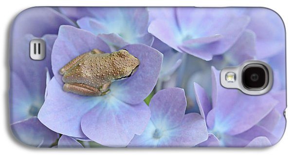 Little Brown Frog On Hydrangea Flower  Galaxy S4 Case by Jennie Marie Schell