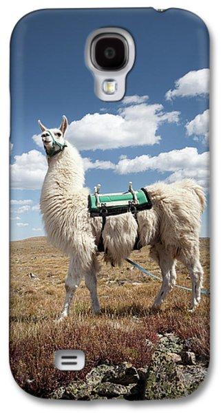Llama Galaxy S4 Case - Llama Portrait by Ryan Heffernan