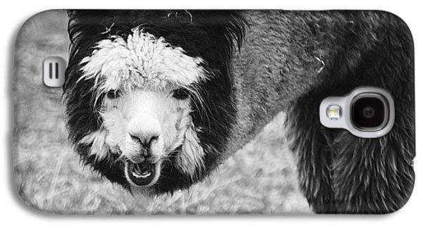 Llama Galaxy S4 Case