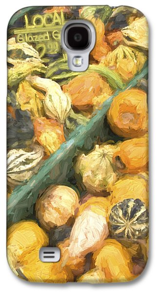 Local Glazed Gourds Painterly Effect Galaxy S4 Case by Carol Leigh