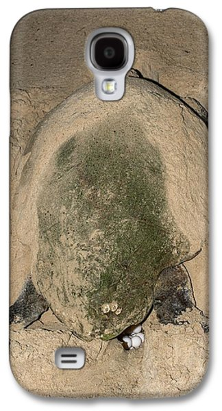Loggerhead Turtle Nesting Galaxy S4 Case by Tony Camacho