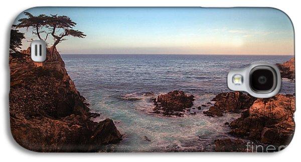 Lone Cyprus Pebble Beach Galaxy S4 Case by Mike Reid