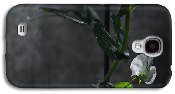 Lone Petal Wall Art Galaxy S4 Case by Chris Fletcher