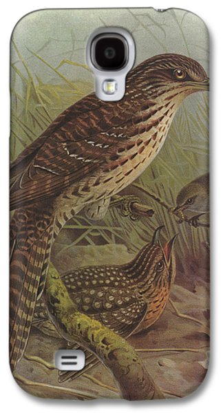 Cuckoo Galaxy S4 Case - Long Tailed Cuckoo And Grey Warbler by Dreyer Wildlife Print Collections