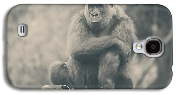 Gorilla Galaxy S4 Case - Looking So Sad by Laurie Search