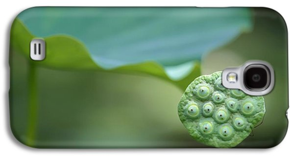 Lotus Leaf And A Seed Pod Galaxy S4 Case