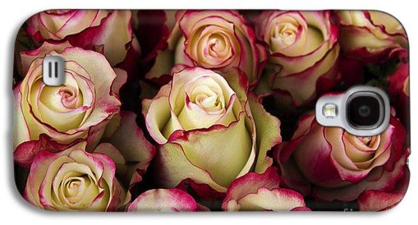 Love Is A Rose IIi Galaxy S4 Case by Al Bourassa