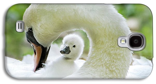 Swan Galaxy S4 Case - Love Surrounds by Jacky Parker