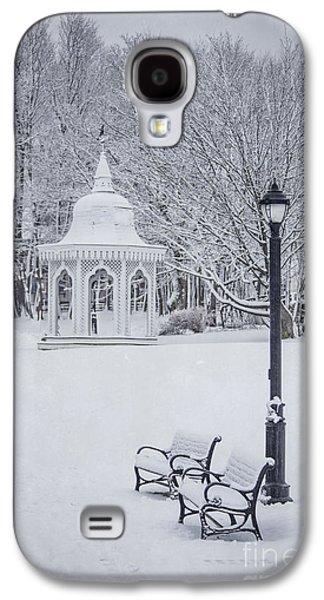 Love Through The Winter Galaxy S4 Case by Evelina Kremsdorf
