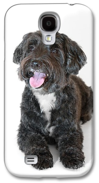 Lovely Long Haired Dog Galaxy S4 Case by Natalie Kinnear