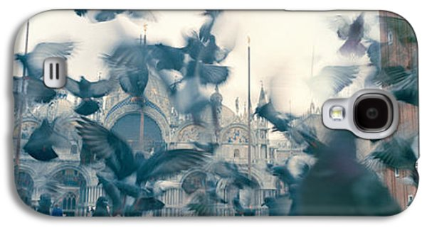Low Angle View Of A Flock Of Pigeons Galaxy S4 Case by Panoramic Images