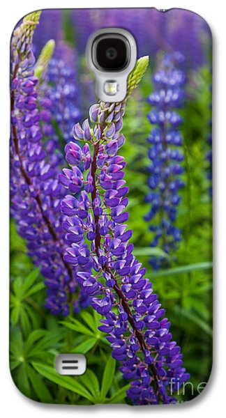 Lupine Curve Galaxy S4 Case by Susan Cole Kelly