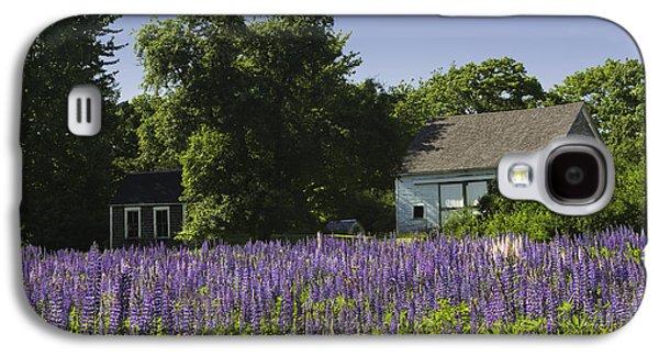 Lupine Flowers Near Round Pond Maine Galaxy S4 Case