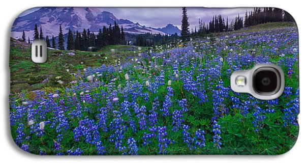 Lupines Dawn Galaxy S4 Case