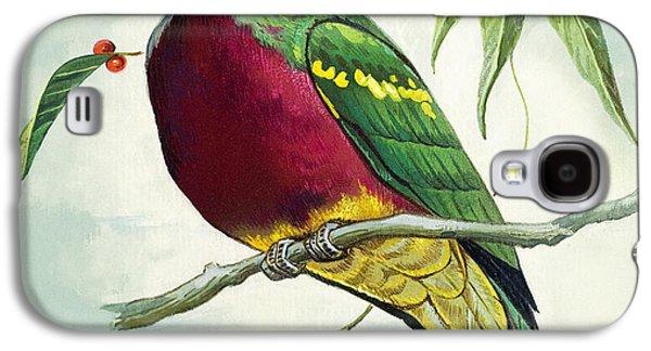 Magnificent Fruit Pigeon Galaxy S4 Case by Bert Illoss