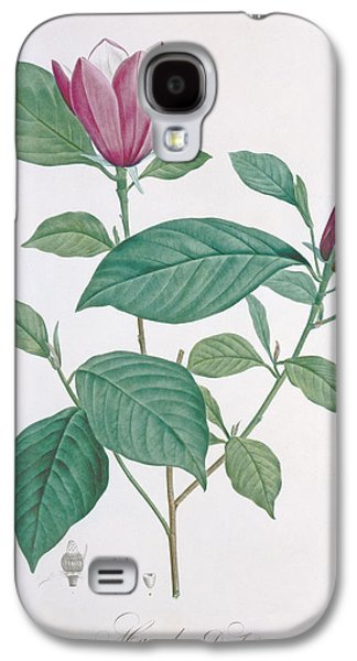 Magnolia Discolor Engraved By Legrand Galaxy S4 Case
