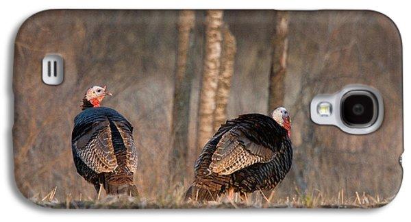 Male Eastern Wild Turkeys Galaxy S4 Case by Linda Freshwaters Arndt