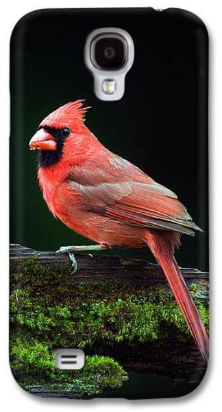 Male Northern Cardinal Cardinalis Galaxy S4 Case by Panoramic Images