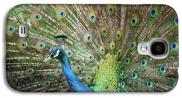 Male Peacock Displaying Galaxy S4 Case