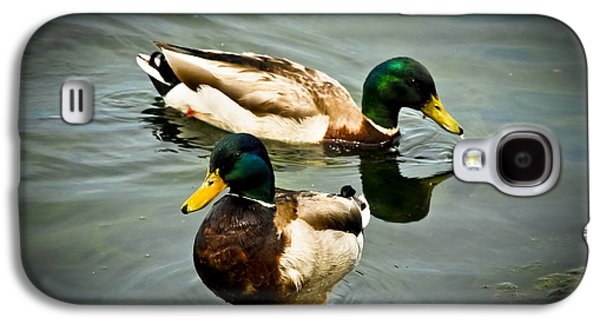 Mallards On Mendota Galaxy S4 Case