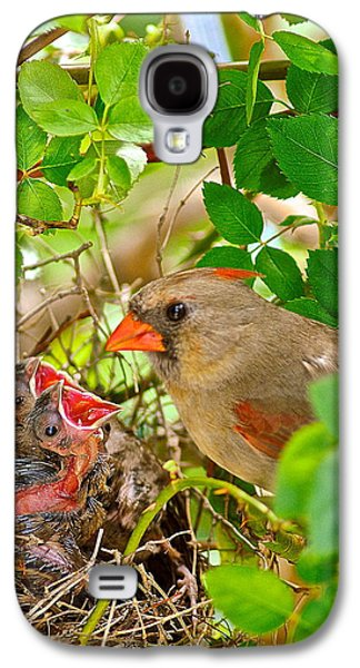 Mama Bird Galaxy S4 Case