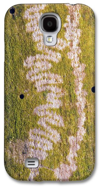 Marks Made By Snail Feeding On Algae Galaxy S4 Case by Dr. John Brackenbury