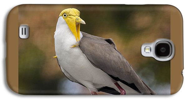 Masked Lapwing Galaxy S4 Case by Carolyn Marshall