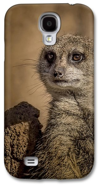 Meerkat Galaxy S4 Case by Ernie Echols