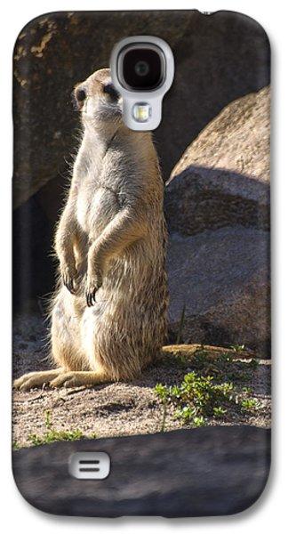 Meerkat Looking Left Galaxy S4 Case by Chris Flees