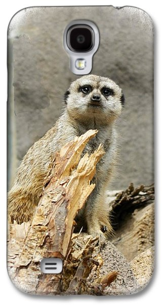 Meerkat Galaxy S4 Case by Michelle Frizzell-Thompson