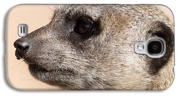 Meerkat Mug Shot Galaxy S4 Case by Ernie Echols