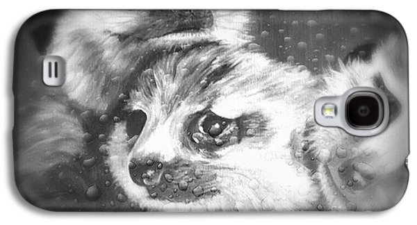Meerkats Galaxy S4 Case by Alice Sebina