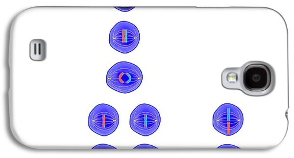 Meiosis And Mitosis Galaxy S4 Case