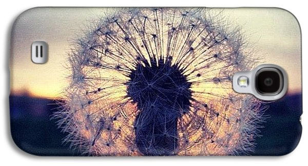 Sky Galaxy S4 Case - #mgmarts #dandelion #sunset #simple by Marianna Mills
