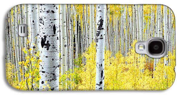 Miles Of Gold Galaxy S4 Case