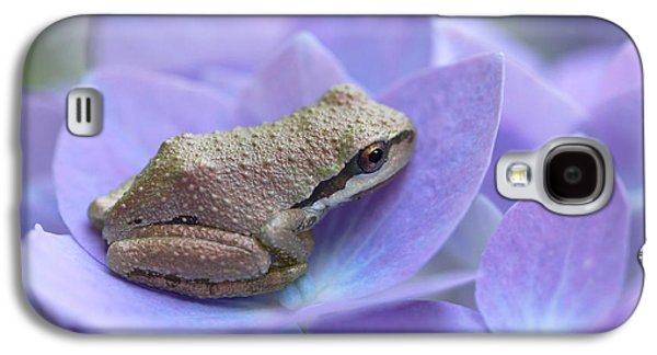 Mini Frog On Hydrangea Flower  Galaxy S4 Case by Jennie Marie Schell